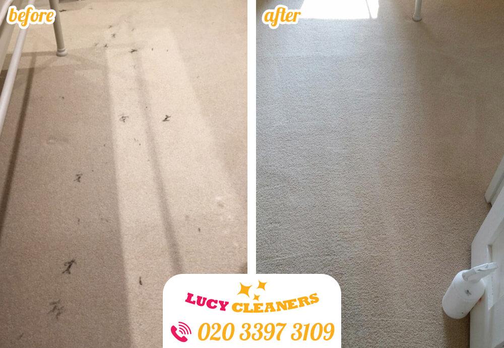 clean carpet E10
