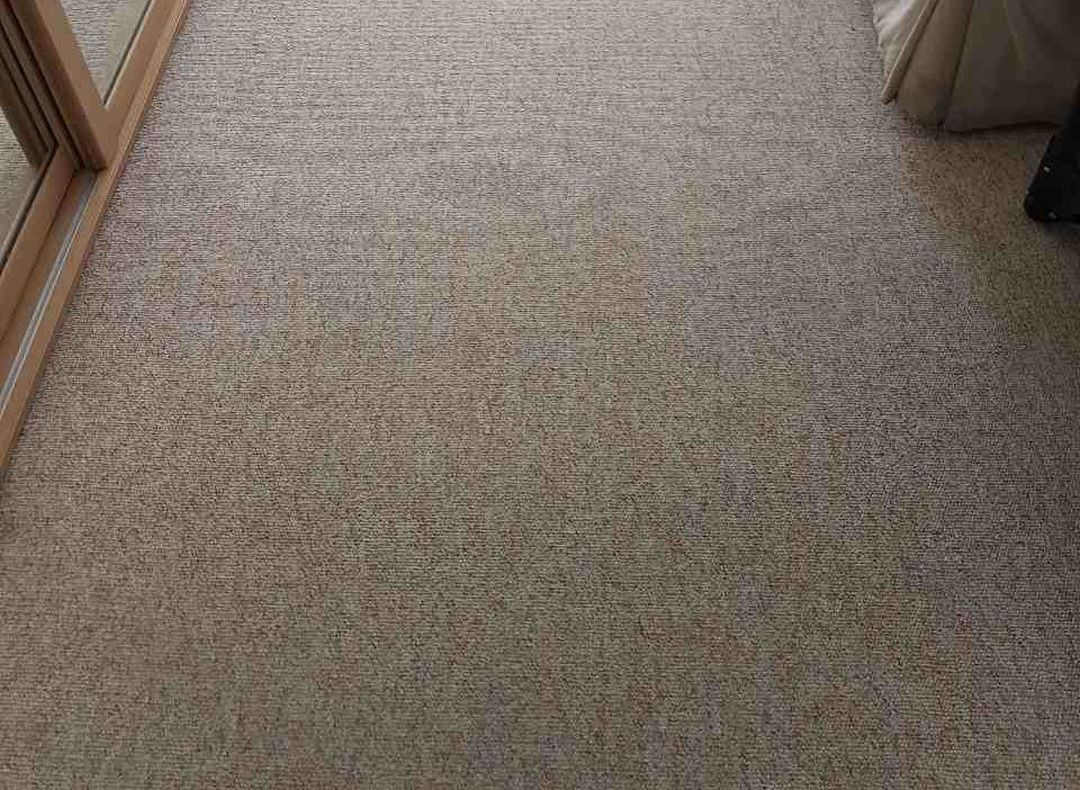 The Carpet Cleaning Services South East London