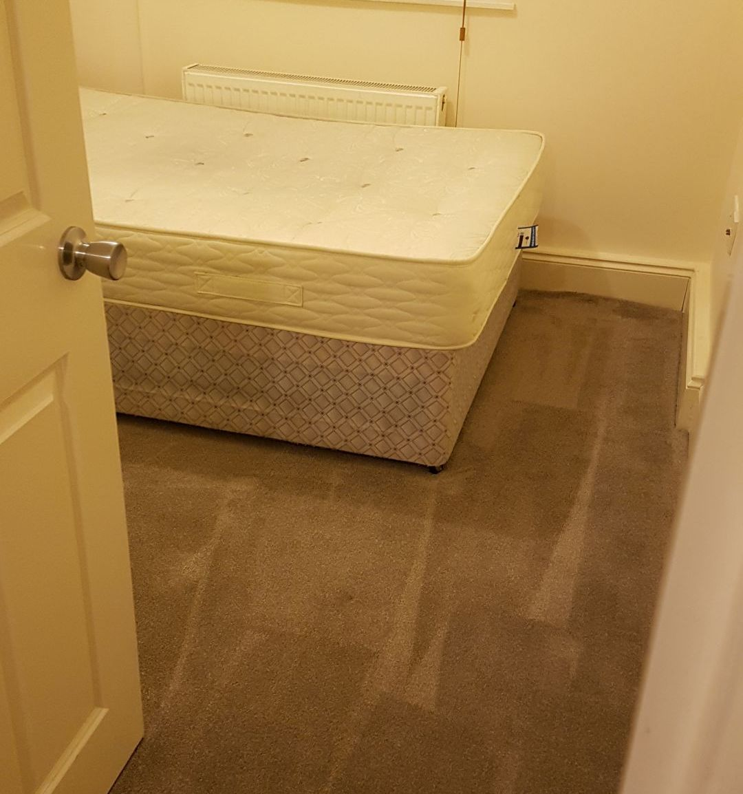 carpet cleaners in Barnes