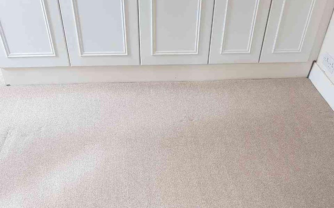 carpet cleaners in Primrose Hill